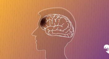 Un pequeño vistazo a la Lesión Cerebral Traumática